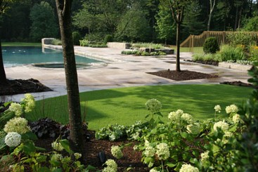 Infinity edge pool, Landscape with bent grass and travertine patio